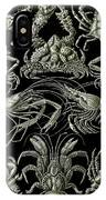 Examples Of Decapoda Kunstformen Der Natur IPhone Case