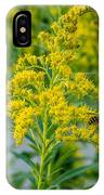Exploring Goldenrod 3 IPhone Case