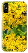 Exploring Goldenrod 5 IPhone Case