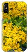 Exploring Goldenrod 6 IPhone Case