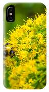 Exploring Goldenrod IPhone Case