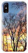 Explosion Of Color In The Sky IPhone Case