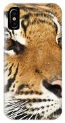 Eye Of The Tiger. IPhone Case