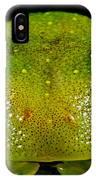 Eye-ringed Bushfrog IPhone Case