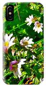 Eyebright On Trout River Trail In Gros Morne Gros Morne National Park-newfoundland  IPhone Case
