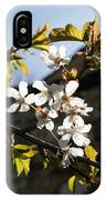 Facades And Fruit Trees - The Church And The Plum IPhone Case