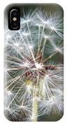 Fairy Umbrellas IPhone Case
