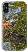 Fall And Moss IPhone Case