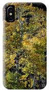Fall Aspen IPhone Case