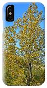 Fall At The Dunes IPhone Case