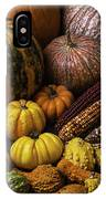 Fall Autumn Abundance IPhone Case