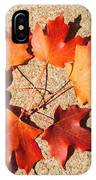 Fall Circle IPhone Case