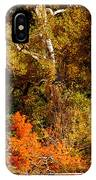 Fall Color Creekside IPhone Case