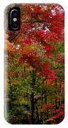 Fall Color Palette IPhone Case