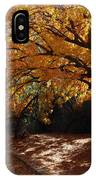 Fall Color Path IPhone Case