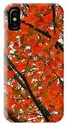 Fall Colors 2014-10 IPhone Case