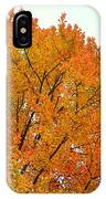 Fall Colors 2014-11 IPhone Case