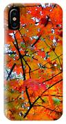Fall Colors 2014-4 IPhone Case