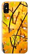 Fall Colors 2014-7 IPhone Case