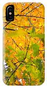 Fall Colors 2014-8 IPhone Case