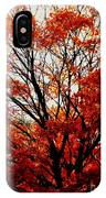 Fall Colors Cape May Nj IPhone Case