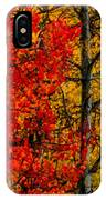 Fall Colors Dp IPhone Case