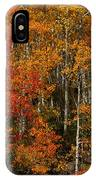 Fall Colors Greeting Card IPhone Case