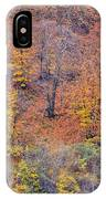 Fall Colors IPhone Case