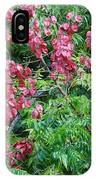Fall Colors In Florida IPhone Case