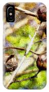 Fall Crepe Myrtle IPhone Case