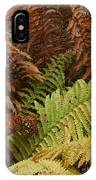 Fall Ferns Acadia National Park Img 6355 IPhone Case