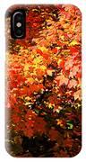 Fall Foliage Colors 21 IPhone Case