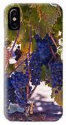 Fall Grape Harvest IPhone Case