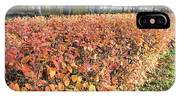 Fall Hedge IPhone Case