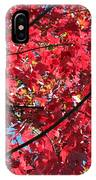 Fall In Illinois IPhone Case