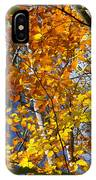 Fall In Nh 2 IPhone Case