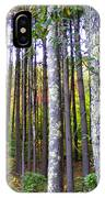 Fall Ivy In Pine Tree Forest IPhone Case