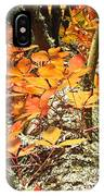 Fall Ivy On Pine Tree IPhone Case