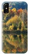 Fall Kaleidoscope IPhone Case