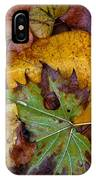 Fall Leaves 1 IPhone Case