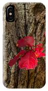 Fall Leaves Against Tree Trunk IPhone Case