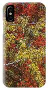 Fall Leaves In So Cal IPhone Case
