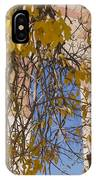 Fall Leaves On Open Windows Jerome IPhone Case
