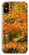 Fall Mix IPhone Case