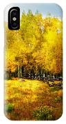 Fall Near Lake City IPhone Case