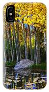 Fall Pond In Mammoth IPhone Case