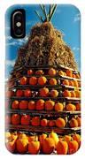 Fall Pumpkins IPhone Case