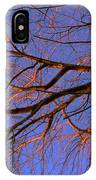 Fall Reflections By Diana Sainz IPhone Case
