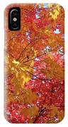 Fall Saint Louis 1 IPhone Case
