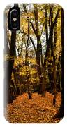 Fall Scene In Bidwell Park IPhone Case
